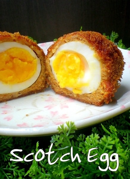 scotch egg 3 txt