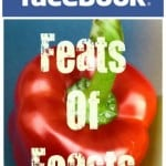 Feats of Feasts at Facebook