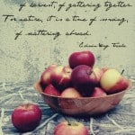 Edible Portraitures – Apples and Fall Series